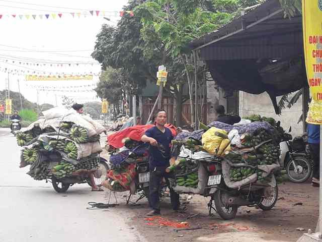 Khoái Châu (Hưng Yên): Đẩy mạnh sản xuất nông nghiệp theo hướng hàng hóa
