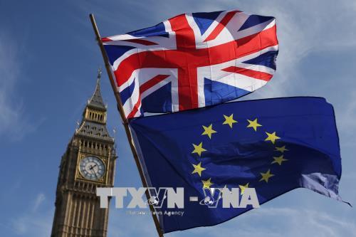 EU thuyết phục Anh ở lại liên minh thuế quan