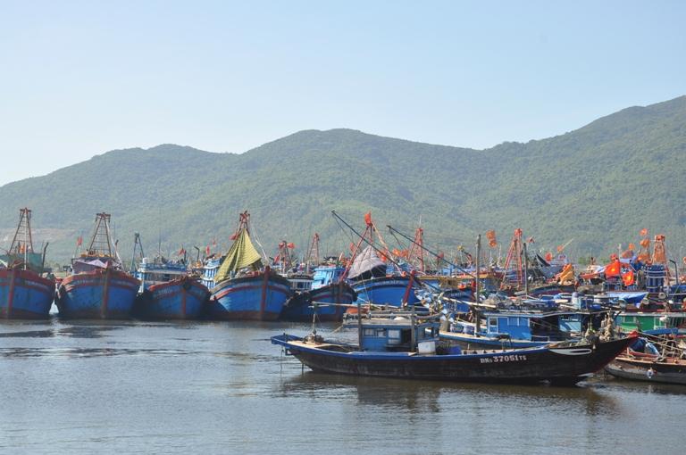 Nỗ lực đáp ứng các khuyến nghị của Ủy ban Châu Âu về khai thác thủy sản