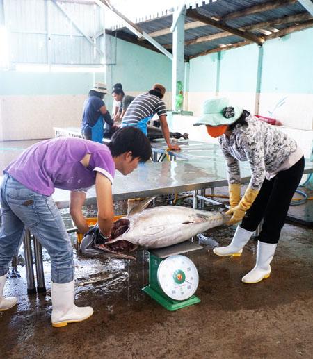 Tìm giải pháp thúc đẩy xuất khẩu nông, lâm, thủy sản bền vững