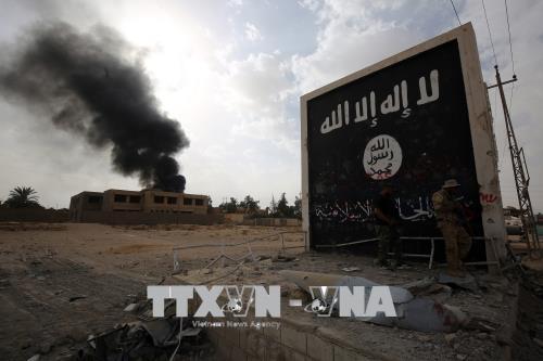 Giới phân tích nhận định IS đang tìm cách quay lại Iraq