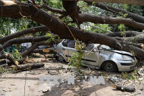 Số nạn nhân thiệt mạng do bão và sét tại Ấn Độ lên tới 47 người