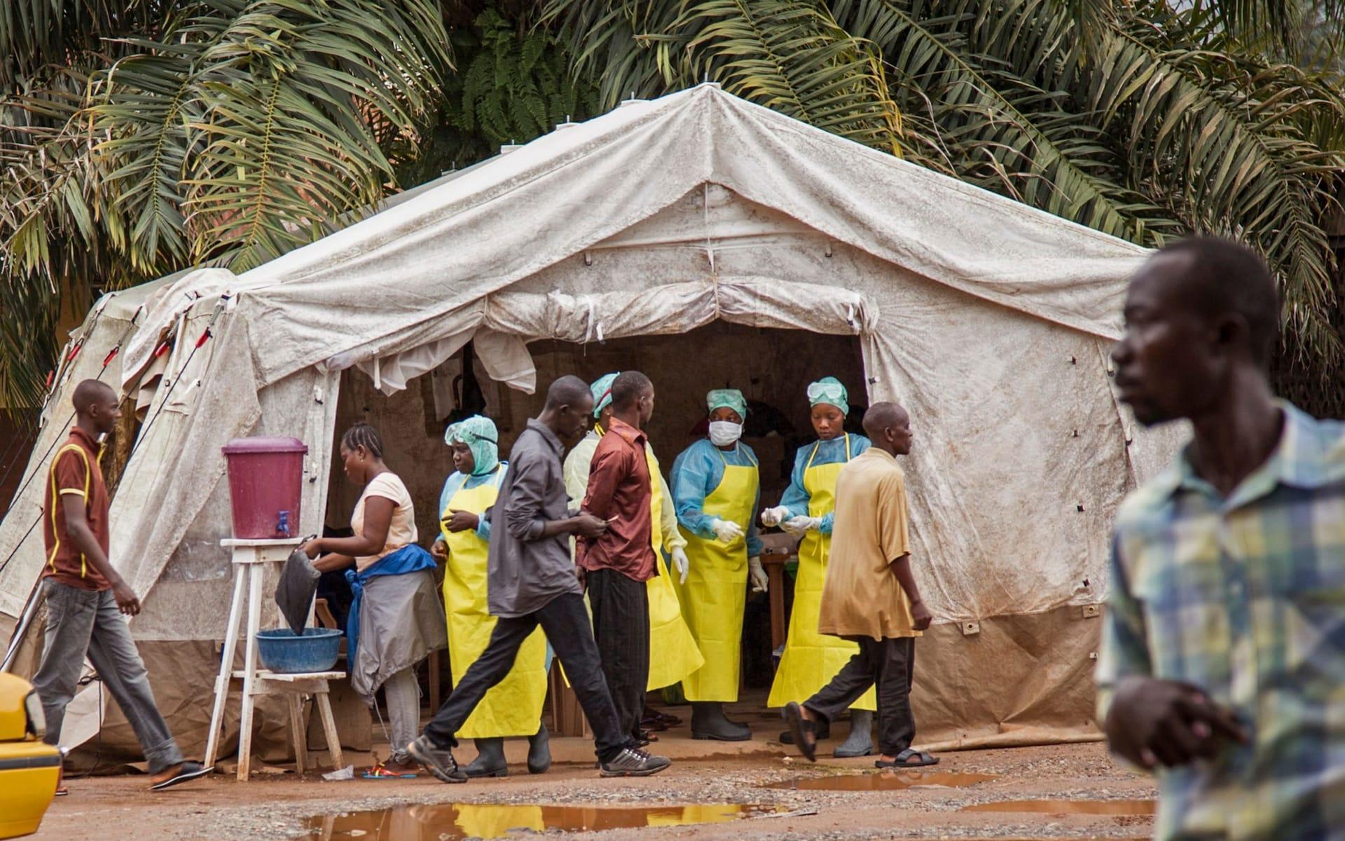 Dịch bệnh do virus Ebola tái bùng phát ở CHDC Congo