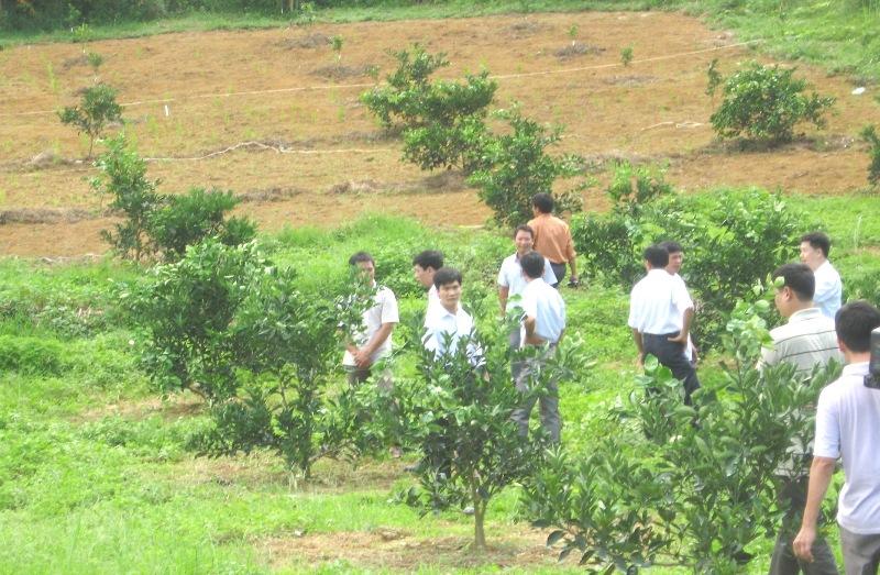 Năm 2022 Hà Giang sẽ đào tạo nghề cho trên 65 nghìn lao động nông thôn  