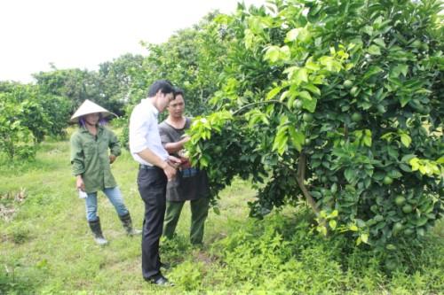 Bắc Giang: Đầu tư, hỗ trợ các thôn, bản đặc biệt khó khăn trên 154 tỷ đồng