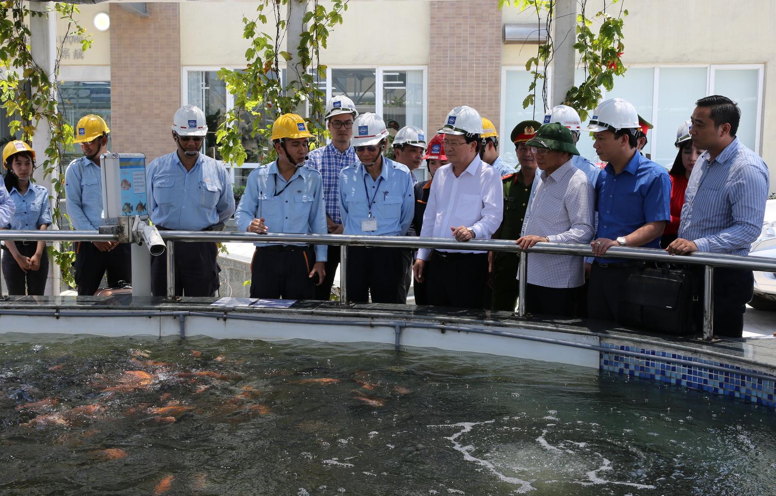 Phải duy trì chế độ kiểm soát môi trường đặc biệt nghiêm ngặt tại Formosa Hà Tĩnh