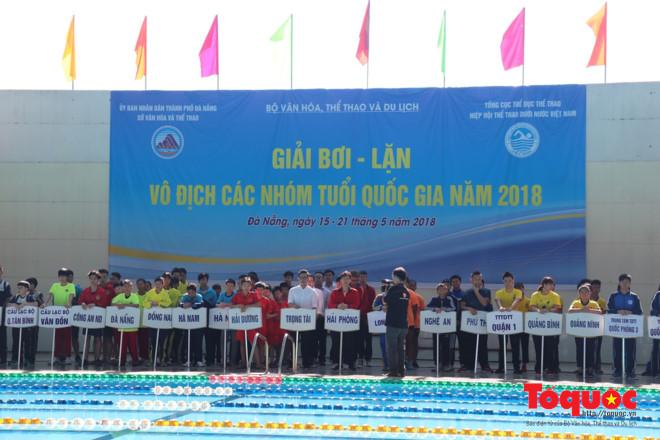 Gần 350 vận động viên tham gia Giải bơi - lặn vô địch các nhóm tuổi quốc gia 2018