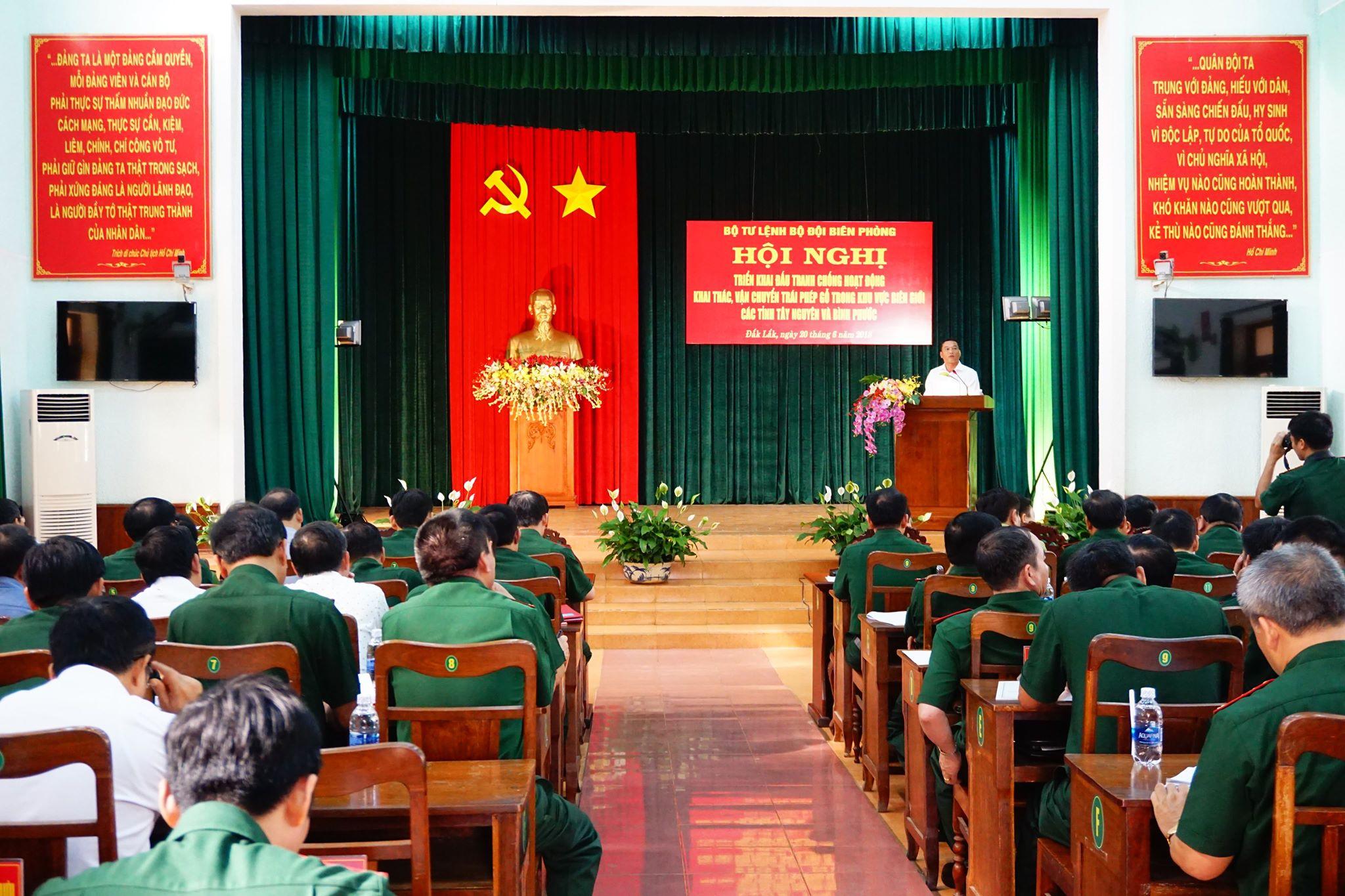 Đấu tranh chống khai thác, vận chuyển gỗ trái phép khu vực biên giới các tỉnh Tây Nguyên và Bình Phước