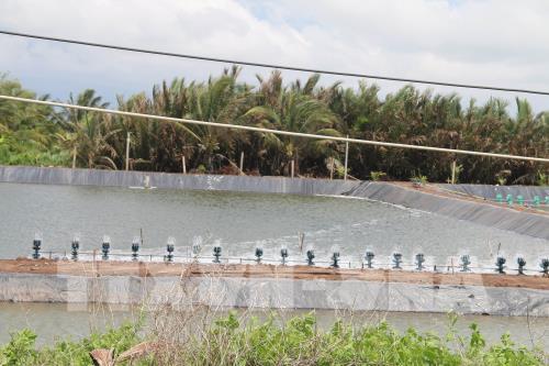 Đánh thức tiềm năng nuôi trồng thủy sản ven biển Gò Công