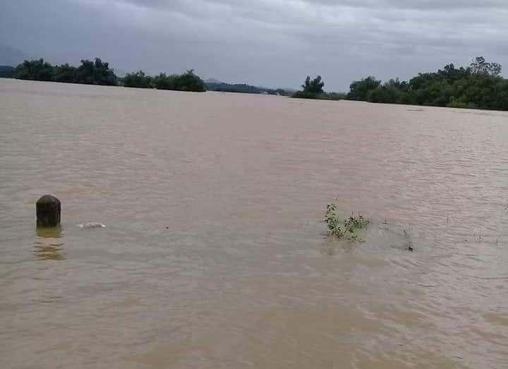 Nước ngập trắng trời ở Phú Thọ  