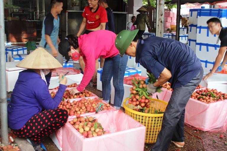 Bắc Giang: Tổng sản lượng vải thiều được tiêu thụ đạt gần 216 nghìn tấn