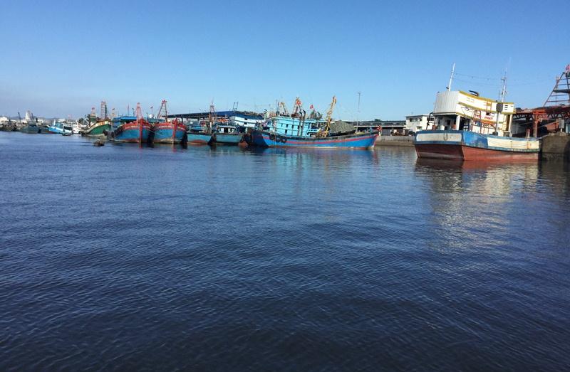 Bà Rịa - Vũng Tàu tập trung xây dựng hệ thống hậu cần dịch vụ nghề cá