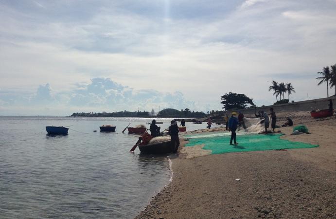FAO cảnh báo tác hại của biến đổi khí hậu đối với hệ sinh thái biển và nước ngọt