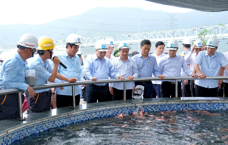 Formosa Hà Tĩnh cần rút kinh nghiệm nghiêm túc, tuyệt đối không vi phạm lần thứ hai