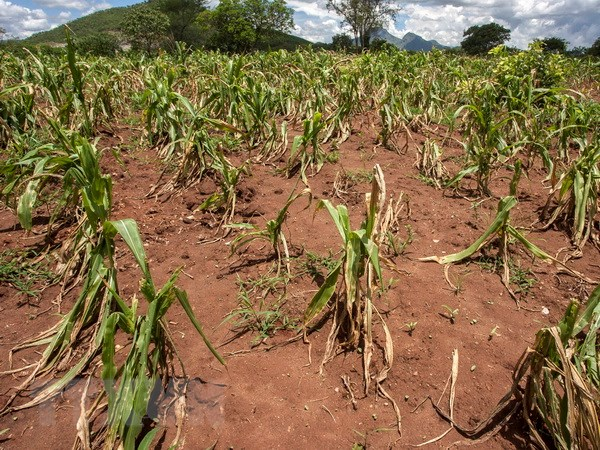 Colombia phê chuẩn Hiệp định Paris về chống biến đổi khí hậu