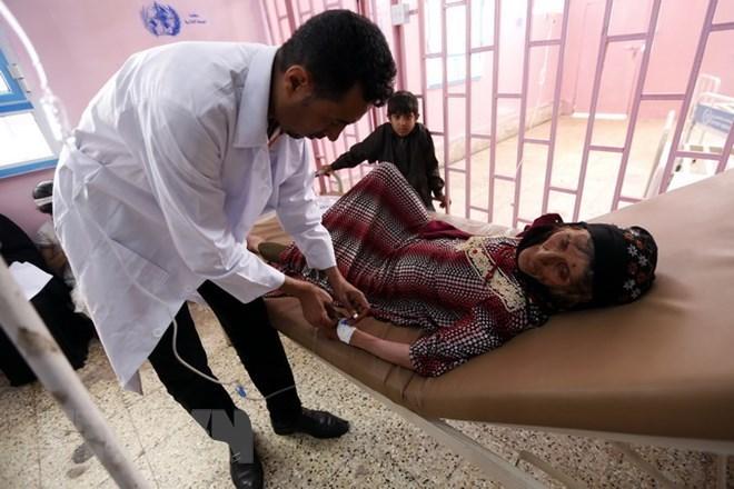 Algeria cam kết ngăn chặn việc bùng phát bệnh dịch tả