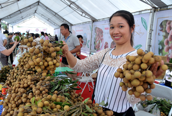 Nhộn nhịp Tuần lễ nhãn lồng Hưng Yên tại Hà Nội