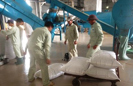 Triển khai đồng bộ các giải pháp quản lý hiệu quả việc sản xuất, kinh doanh phân bón