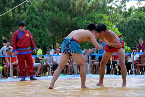 Trên 100 đô vật trẻ, thiếu niên tham dự Giải vô địch trẻ và thiếu niên vật dân tộc toàn quốc lần thứ XX