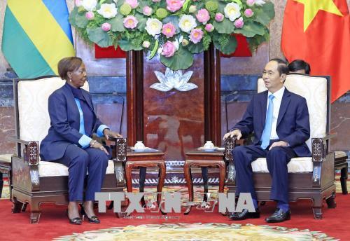 Chủ tịch nước: Mở rộng các lĩnh vực hợp tác giữa Việt Nam với Rwanda và Guinea