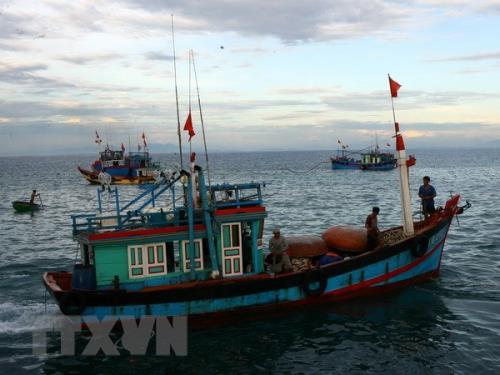 Các tỉnh phối hợp quản lý tàu cá hoạt động khai thác thủy sản trên biển