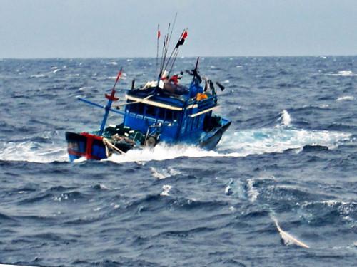 Đã cứu vớt 4 thuyền viên trôi dạt trên biển, 3 thuyền viên vẫn chưa tìm thấy tung tích