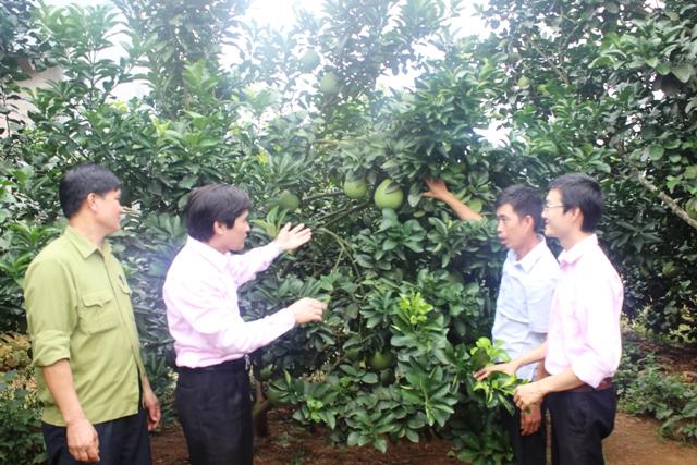 Hà Tĩnh đẩy mạnh phát triển kinh tế hợp tác xã