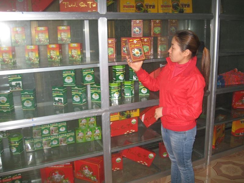 Hà Giang: Nâng cao uy tín của thương hiệu chè Shan  