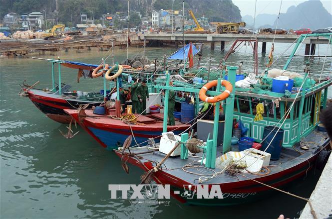 Không cho phép khai thác thủy sản trong vùng di sản vịnh Hạ Long