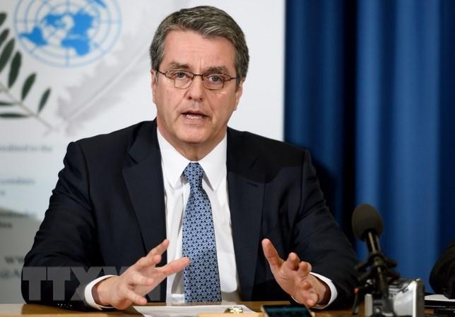 Tổng Giám đốc WTO thừa nhận cần cải cách hệ thống thương mại toàn cầu