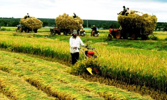 Công tác Hội và phong trào nông dân tiếp tục có nhiều đột phá mới