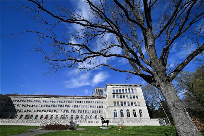 Mỹ yêu cầu WTO điều tra các biện pháp áp thuế trả đũa của nhiều đối tác