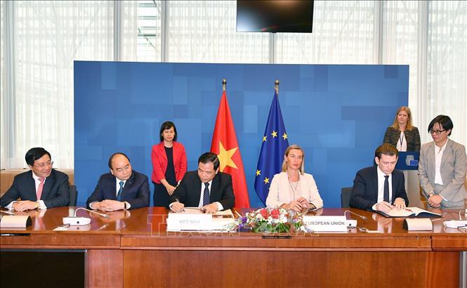 Đảm bảo gỗ, sản phẩm gỗ của Việt Nam xuất khẩu sang EU có nguồn gốc hợp pháp