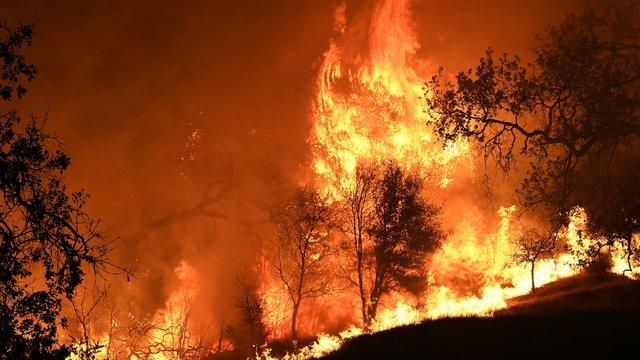 """""""Bão lửa"""" thảm khốc do cháy rừng tại bang California (Mỹ)"""