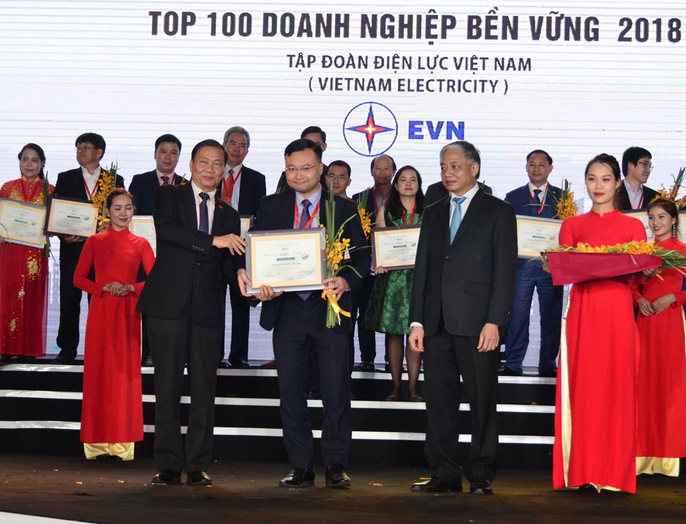 EVN nhận giải thưởng Doanh nghiệp bền vững tại Việt Nam năm 2018