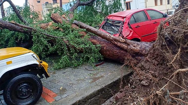 Bão Gaja gây thiệt hại lớn về người và của ở Ấn Độ