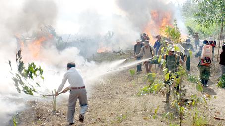 Chủ rừng phải tổ chức thực tập phương án chữa cháy rừng