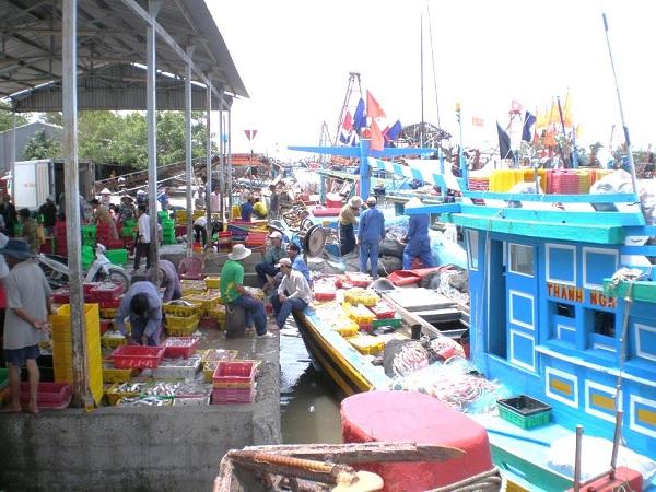Quá tải cảng cá ở Trà Vinh