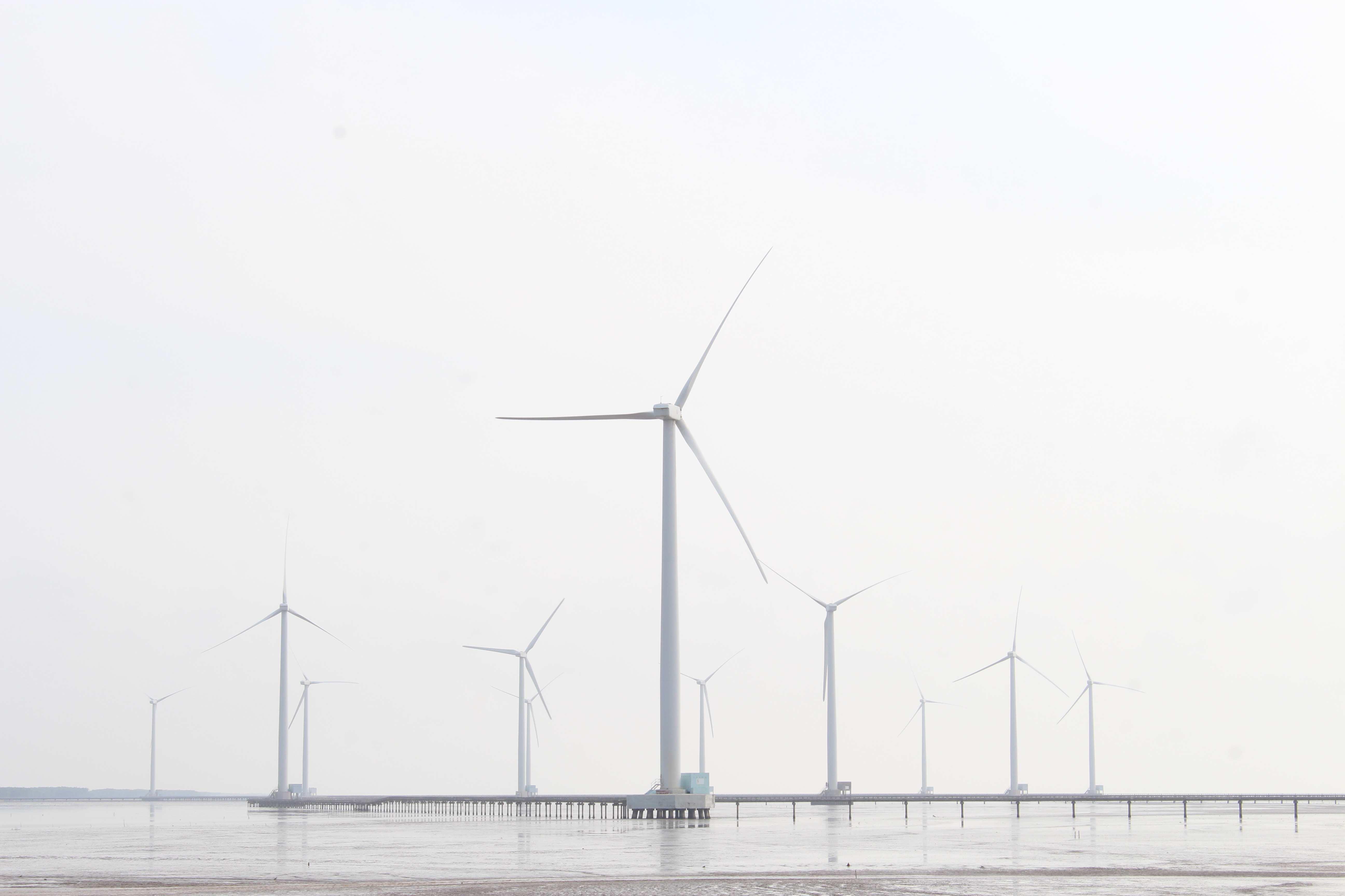 Phát triển điện gió ở Ninh Thuận