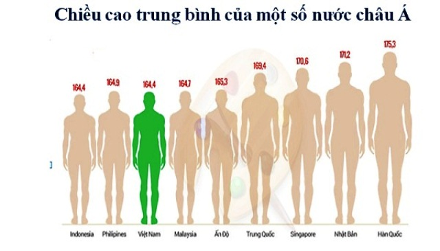 Chiều cao người Việt thấp hơn chuẩn thế giới trên 10cm