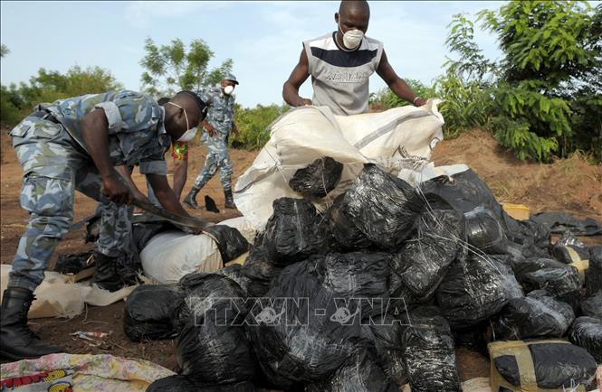 Báo động thực trạng buôn bán ma túy tại Tây và Trung Phi