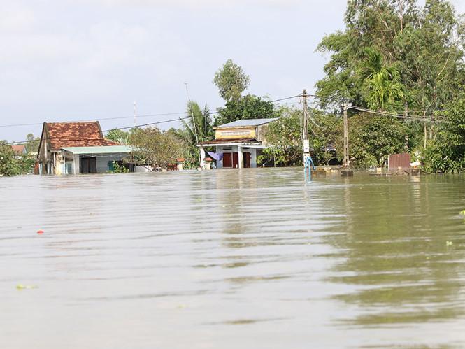 Nguy cơ cao xảy ra lũ trên các sông ở miền Trung