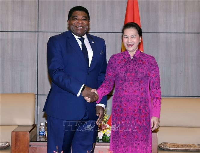Tăng cường sự tham gia của Quốc hội Việt Nam tại diễn đàn IPU