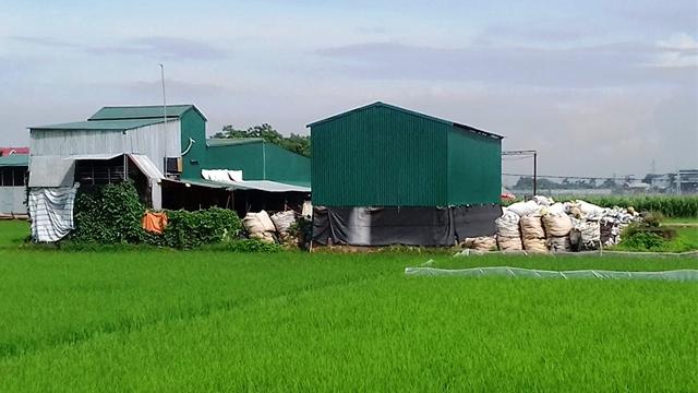 Yên Lạc (Vĩnh Phúc): Cần điều chỉnh quy hoạch đất nông nghiệp, phục vụ phát triển kinh tế giai đoạn mới