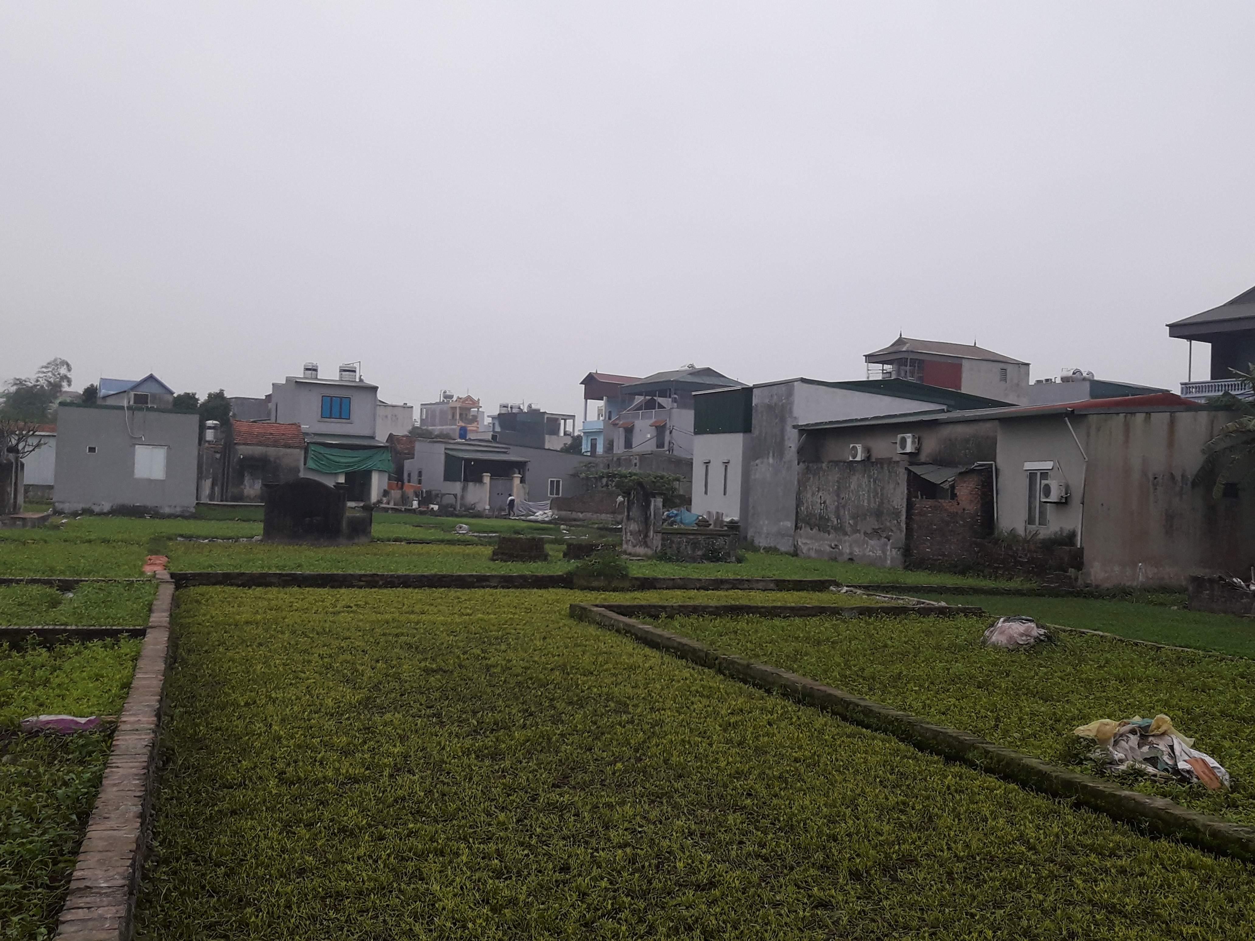 Xã Vĩnh Quỳnh, huyện Thanh Trì (Hà Nội): Nhiều công trình xây dựng trái phép trên đất nông nghiệp