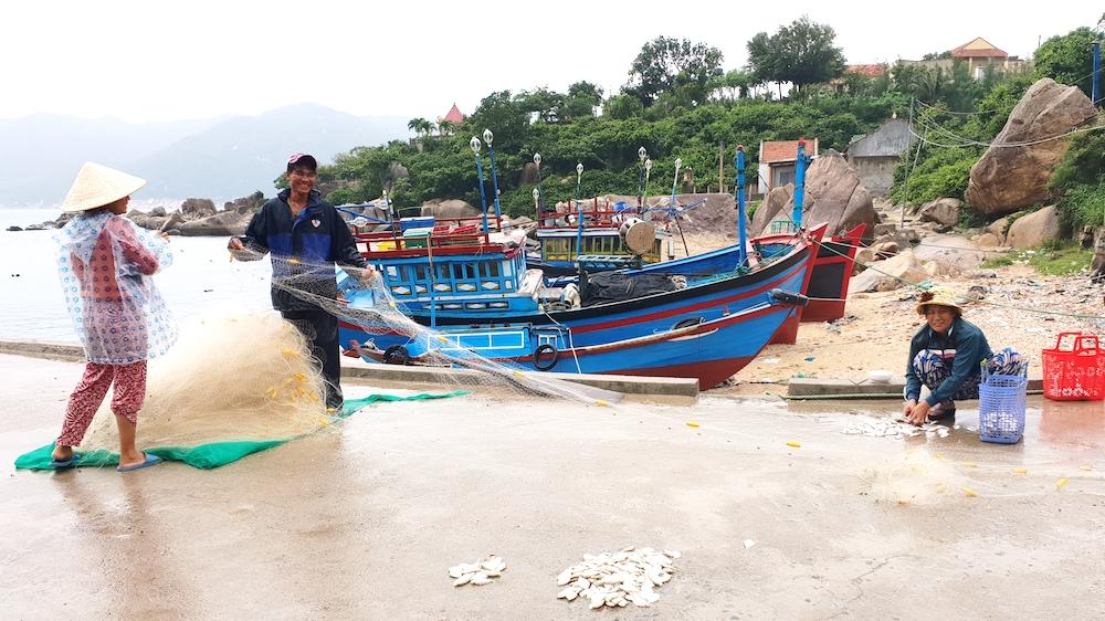 Tết về trên thôn đảo Khải Lương