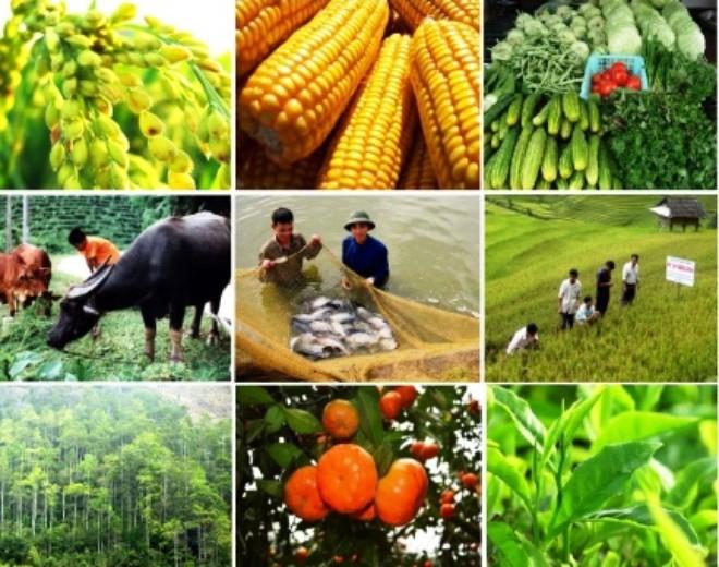 Kế hoạch triển khai thi hành Luật Trồng trọt, Luật Chăn nuôi