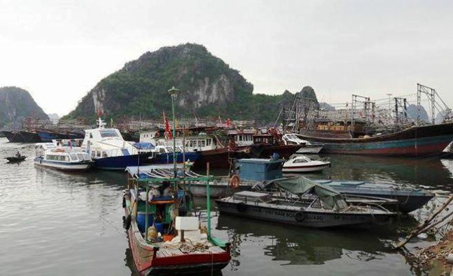 Hoàn thiện Đề án bảo đảm trật tự an toàn giao thông đường thủy nội địa