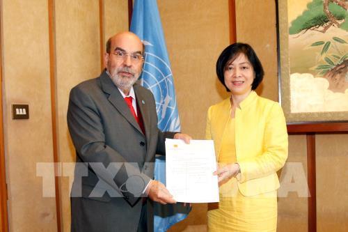 Việt Nam tiếp tục là đối tác quan trọng của FAO