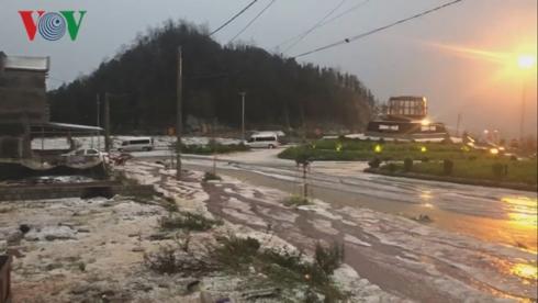 Mưa đá và gió mạnh xảy ra tại nhiều địa phương Lào Cai